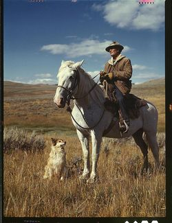 Shepherd and horse in Montana 1942