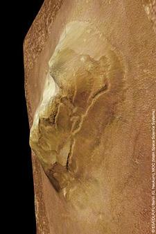 Mars_face_esa